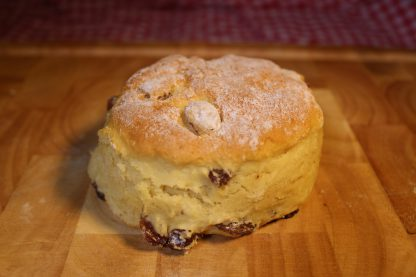 picture of fruit scone